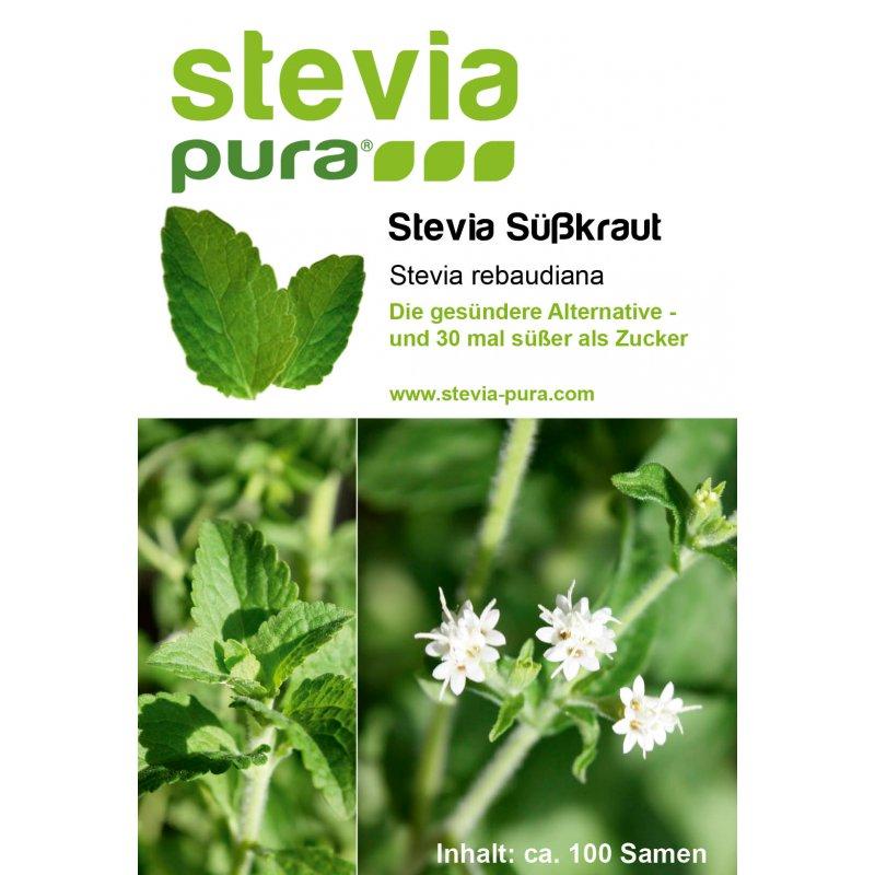 Stevia Rebaudiana Bertoni cleaned seeds no calories Sugar Substitute