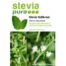 Stevia Seeds - Rebaudiana Plant - Honey Leaf - Sweet Herb